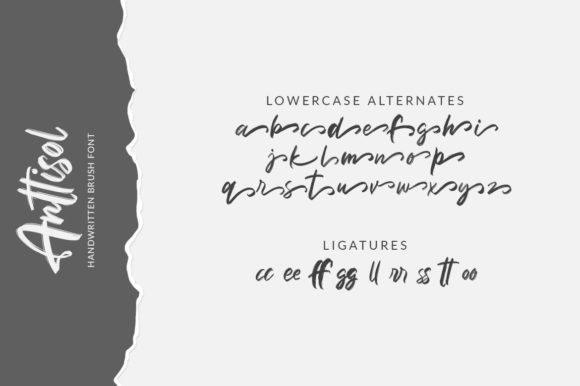 Anttisol Font By Weape Design Image 11