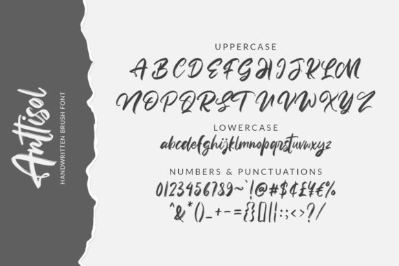 Anttisol Font By Weape Design Image 10