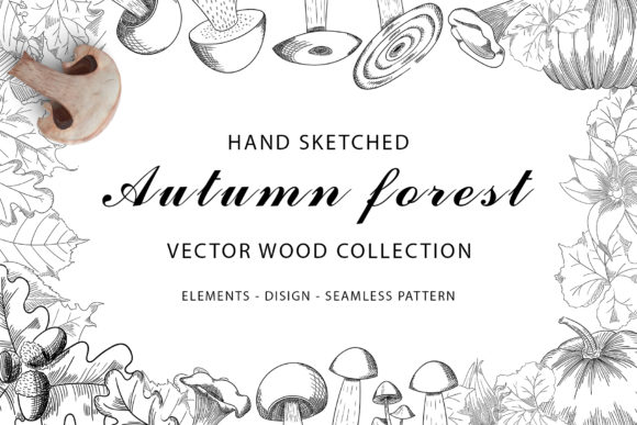 Print on Demand: Autumn Forest Vector Wood Collection Grafik Illustrationen von Gennadii ART
