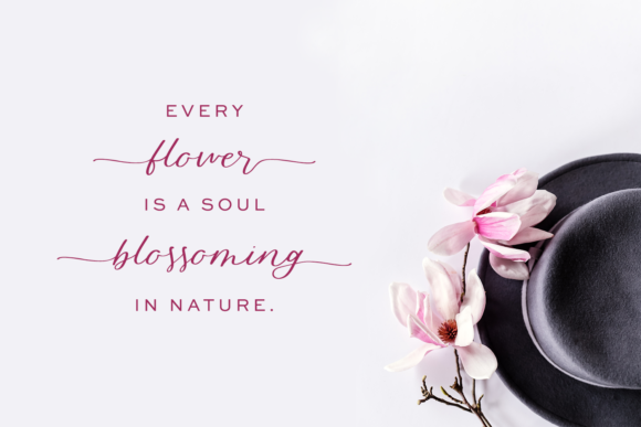 Print on Demand: Blossomberry Script & Handwritten Font By BeckMcCormick - Image 2