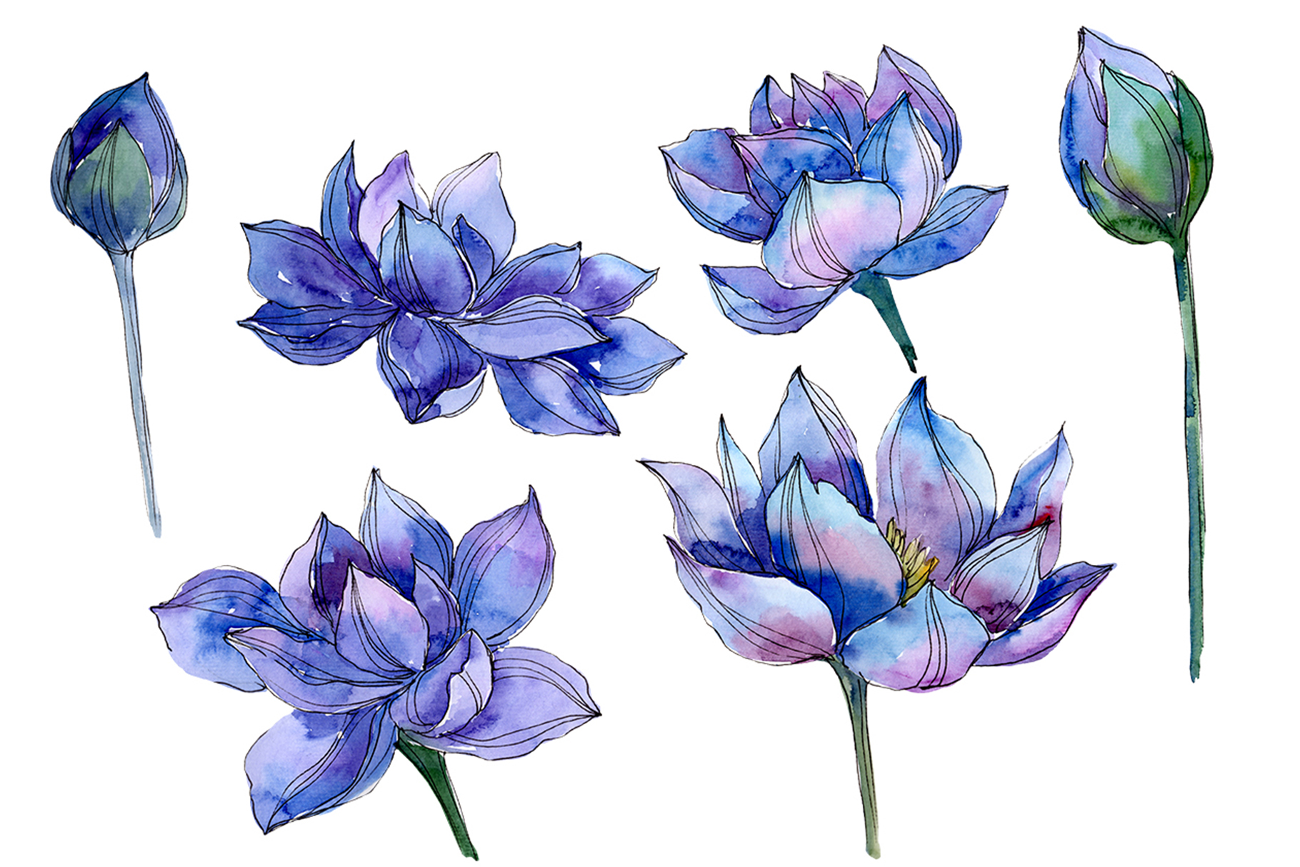 Download Free Blue Watercolor Lotus Flower Graphic By Mystocks Creative Fabrica for Cricut Explore, Silhouette and other cutting machines.
