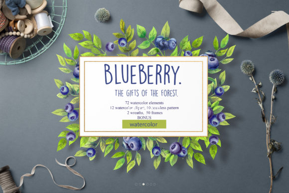 Print on Demand: Blueberry the Gifts of the Forest Graphic Illustrations By Natika_art