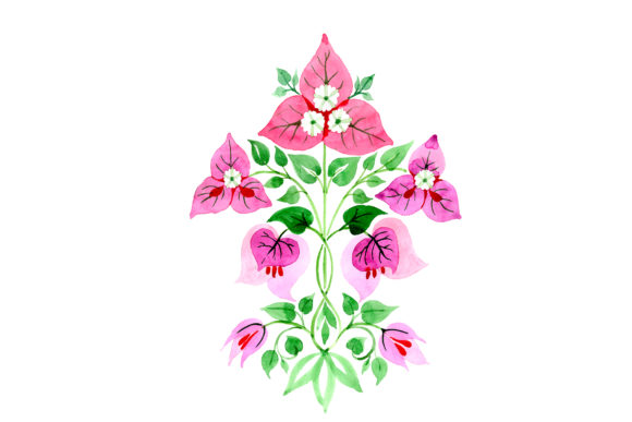 Download Free Bougainvillea Ornament Pink Watercolor Graphic By Mystocks for Cricut Explore, Silhouette and other cutting machines.