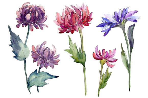 Print on Demand: Bouquet of Flowers Aster Forest Fairy Graphic Illustrations By MyStocks