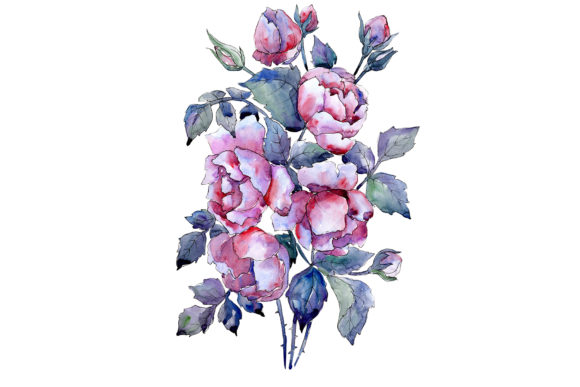 Print on Demand: Bouquet of Roses Flower Watercolor Graphic Illustrations By MyStocks