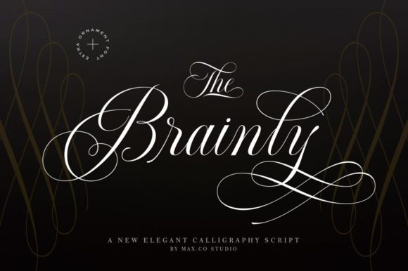 Print on Demand: Brainly Script & Handwritten Font By Max.co
