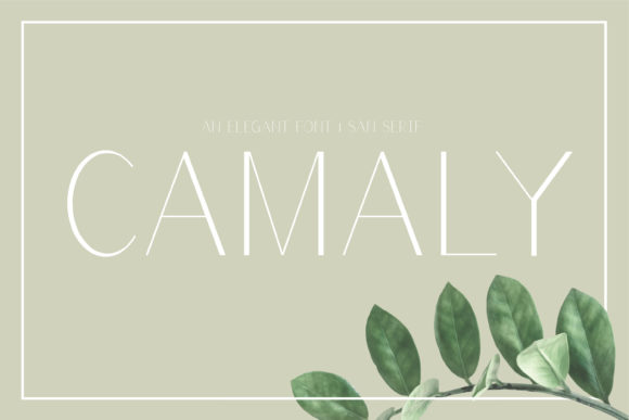 Camaly Font By White Supply Image 1