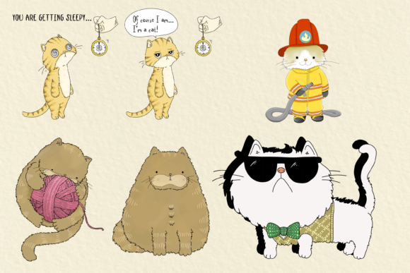Cats 20 Assorted Illustrations Graphic By Jen Digital Art Image 3