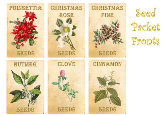 Christmas Backgrounds with Tags Graphic By The Paper Princess Image 9
