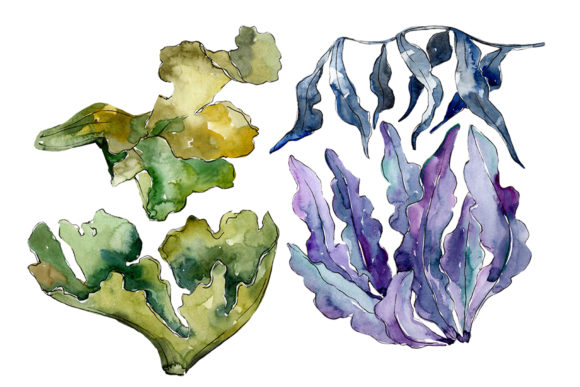 Print on Demand: Coral Sarcophiton Watercolor Png Graphic Illustrations By MyStocks - Image 1