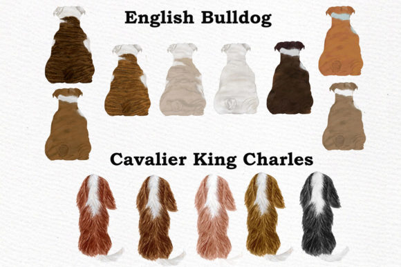 Dogs Clipart Graphic By LeCoqDesign Image 2
