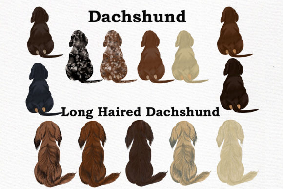 Dogs Clipart Graphic By LeCoqDesign Image 6