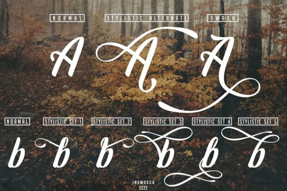 Print on Demand: Early Morning Script & Handwritten Font By inumocca_type - Image 9