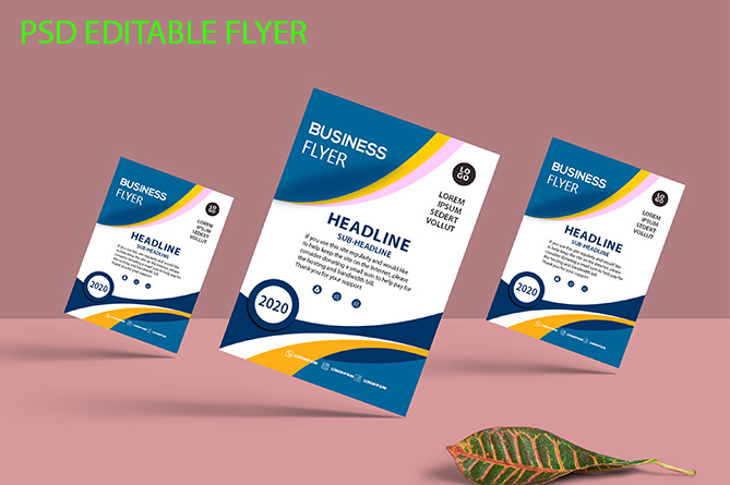 Editable Flyer Template Graphic By Storm Brain Creative Fabrica