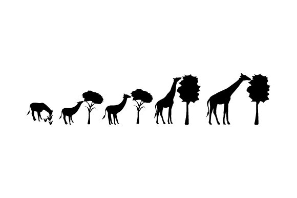 Evolution Characters Giraffe Svg Cut File By Creative Fabrica