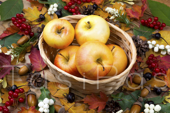 Print on Demand: Fall Concept with Apples Graphic Food & Drinks By TasiPas