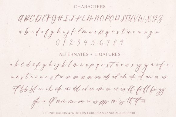 Print on Demand: Fall Ember Script & Handwritten Font By BeckMcCormick - Image 11