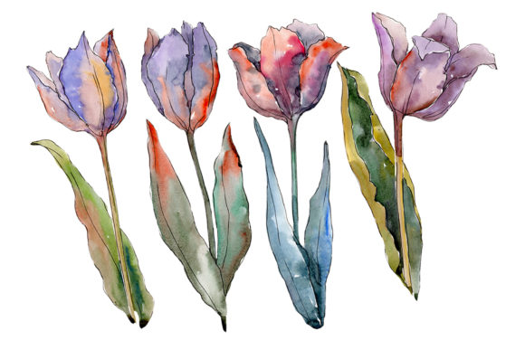 Print on Demand: Flowers Tulips Fiery Hello Watercolor Graphic Illustrations By MyStocks
