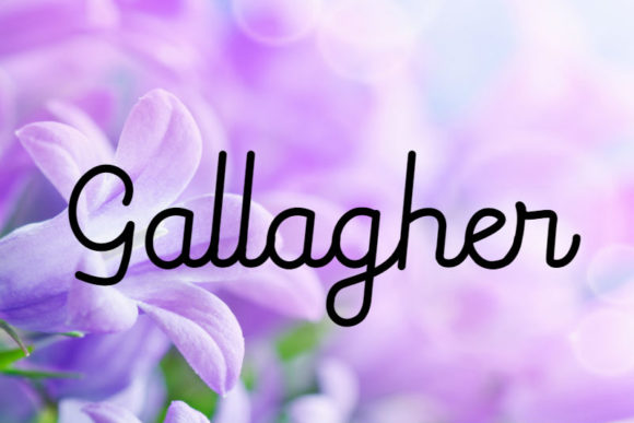 Print on Demand: Gallagher Script & Handwritten Font By mail.skygroup