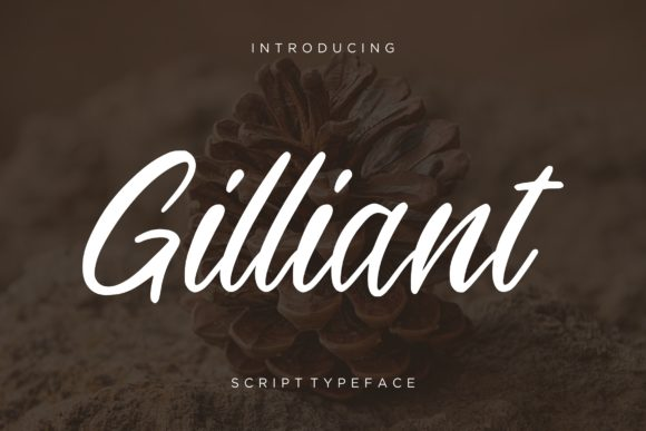 Print on Demand: Gilliant Script & Handwritten Font By CreatypeStudio