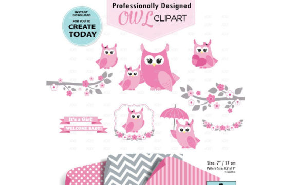 Girl Owl Clipart Set in Pink+3 Patterns Graphic By adlydigital