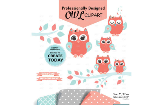 Print on Demand: Girl Owl Clipart in Coral Aqua +3Pattern Graphic Illustrations By adlydigital