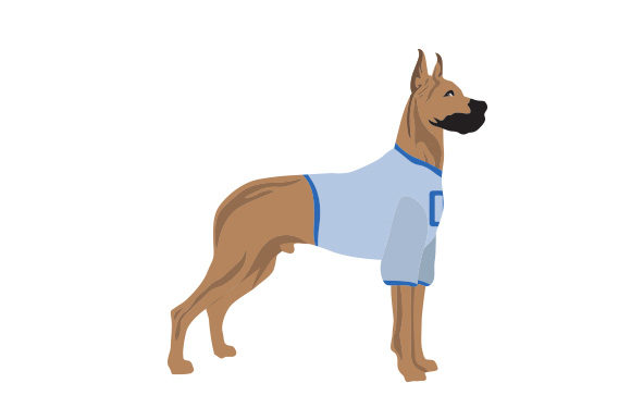 Great Dane in Football Jersey Dogs Craft Cut File By Creative Fabrica Crafts - Image 1