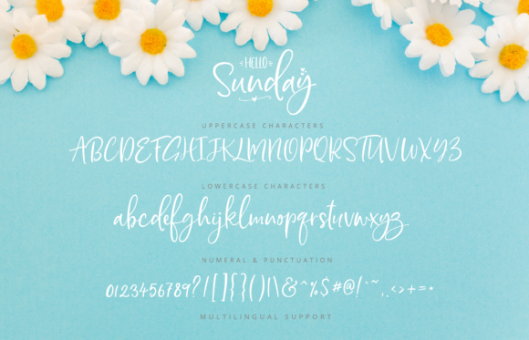 Print on Demand: Hello Sunday Script & Handwritten Font By silverdav - Image 8