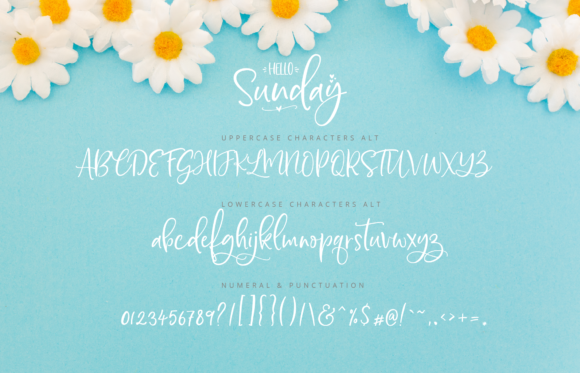 Print on Demand: Hello Sunday Script & Handwritten Font By silverdav - Image 9