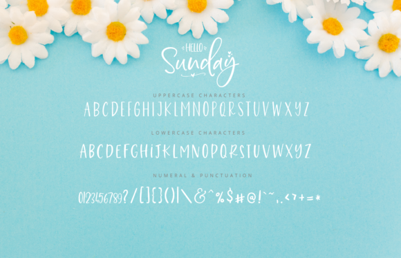 Print on Demand: Hello Sunday Script & Handwritten Font By silverdav - Image 10