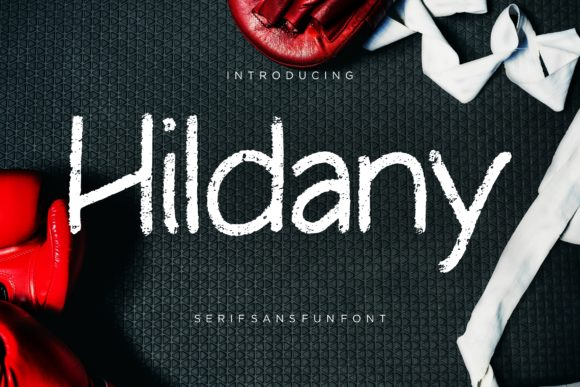 Print on Demand: Hildany Sans Serif Font By CreatypeStudio