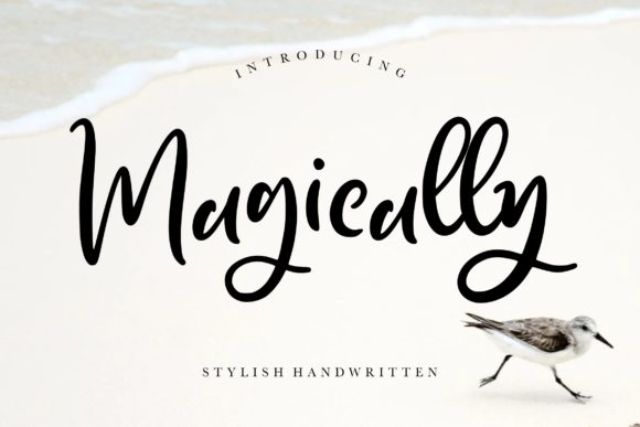 Print on Demand: Magically Script & Handwritten Font By CreatypeStudio