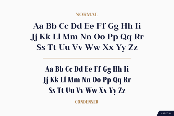 Print on Demand: Millard Sans Serif Font By Artegra - Image 9