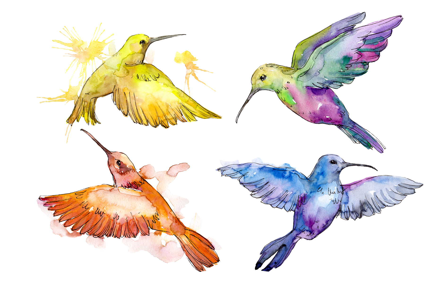 Download Free Nature World Bird Hummingbird Watercolor Graphic By Mystocks for Cricut Explore, Silhouette and other cutting machines.