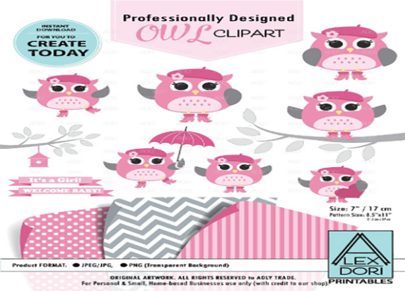Download Free Owl Girl Clipart Baby Pink And Gray Owl Graphic By Adlydigital for Cricut Explore, Silhouette and other cutting machines.