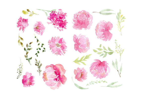 Print on Demand: Pink Flowers Peony Graphic Illustrations By Primafox Design - Image 2