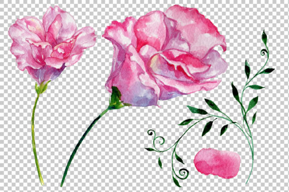 Print on Demand: Pink Rose Strength of Love Watercolor Graphic Illustrations By MyStocks - Image 6
