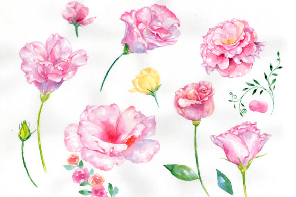 Print on Demand: Pink Rose Strength of Love Watercolor Graphic Illustrations By MyStocks