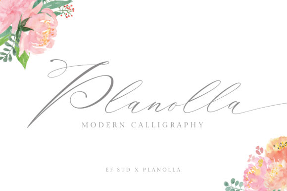 Print on Demand: Planolla Script & Handwritten Font By Ef Studio
