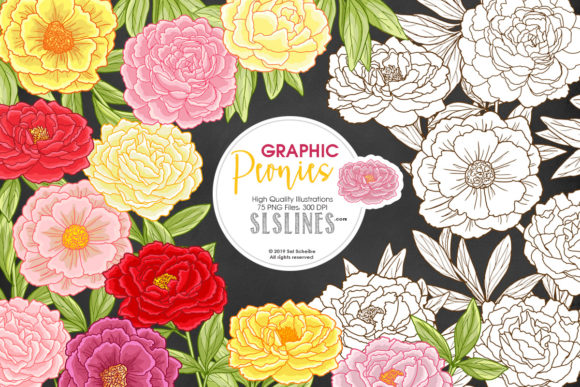 Print on Demand: Pretty Peonies in Pink & Yellow Graphic Illustrations By SLS Lines