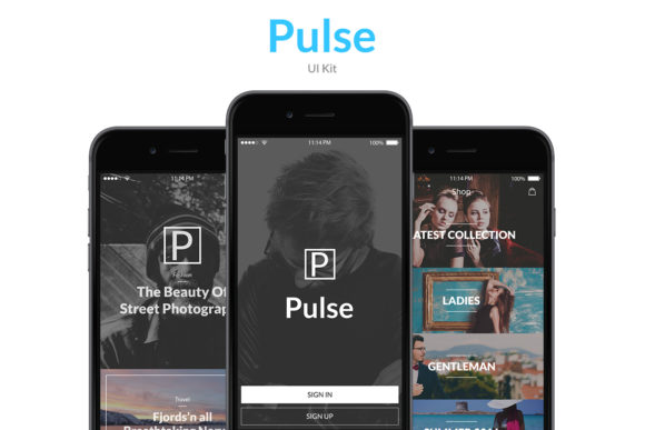 Pulse Graphic UX and UI Kits By Web Donut - Image 2