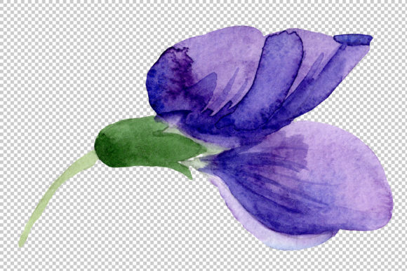 Print on Demand: Purple Sweet Pea Flower Watercolor Graphic Illustrations By MyStocks - Image 5