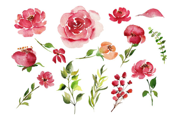 Print on Demand: Red Indigo Flowers Graphic Illustrations By Primafox Design - Image 7