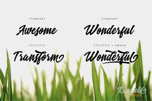 Print on Demand: Ricefield Script & Handwritten Font By rudhisasmito - Image 4