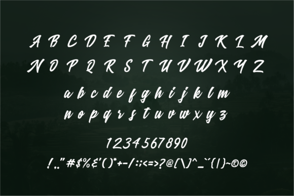 Print on Demand: Ricefield Script & Handwritten Font By rudhisasmito - Image 7