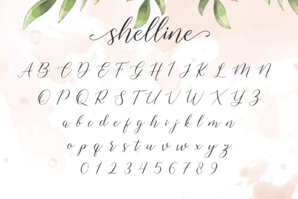 Print on Demand: Shelline Script & Handwritten Font By almarkhatype - Image 6