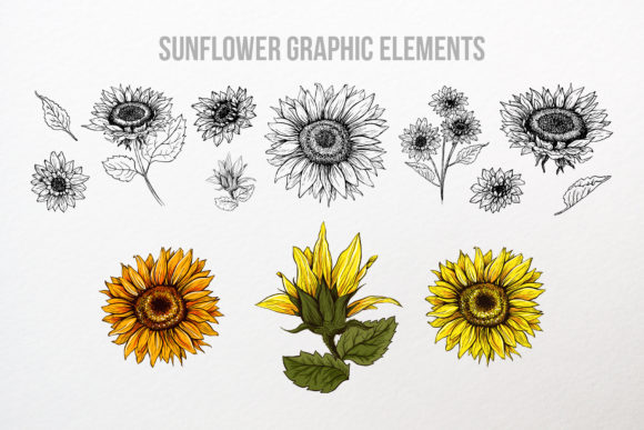 Sunflower Patterns Collection Graphic Patterns By ilonitta.r - Image 4