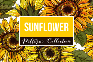 Sunflower Patterns Collection Graphic Patterns By ilonitta.r