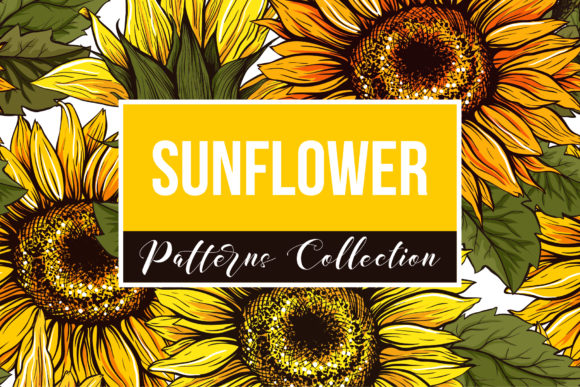 Sunflower Patterns Collection Graphic Patterns By ilonitta.r - Image 1