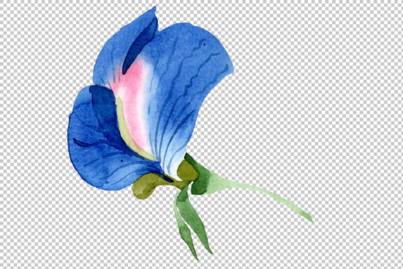 Print on Demand: Sweet Pea Blue Watercolor Png Graphic Illustrations By MyStocks - Image 4